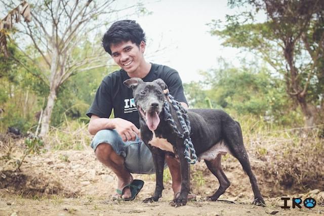 IRO Adoption